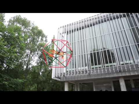 Flying icosahedron