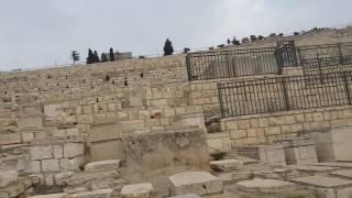 #x202b;ממרכז מידע הר הזיתים לחלקת בוראק למציאת קברו של מזכירו של בן יהודה משה בר ניסים חלק א#x202c;lrm;