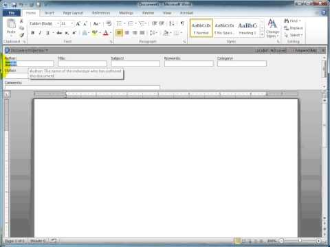 Q&A - Accessing Word 2010 Document Panel