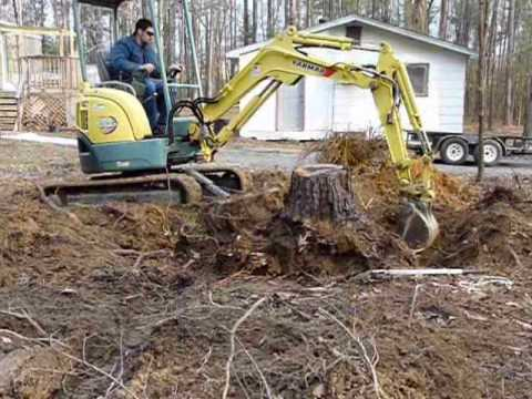 Removing Stump with Small Excavator