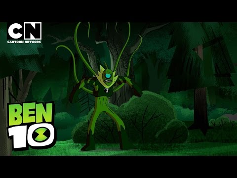 Ben 10 | Meet WILDVINE! | Cartoon Network