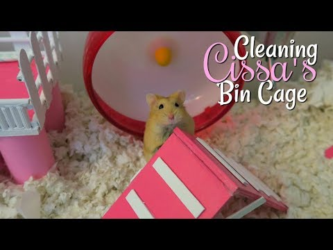 Cleaning Cissa's Hamster Bin Cage || Pink & White Cage Tour!