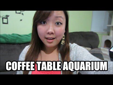 Coffee Table Aquarium Reveal