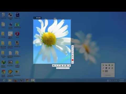 How to take a Screenshot (Capture screen) on Windows XP /7/8 or MAC