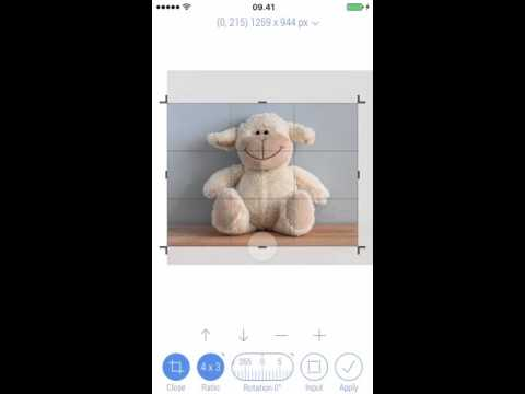 How to crop toy sheep with Crop-Size App