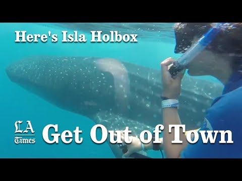 Here's Isla Holbox | Los Angeles Times