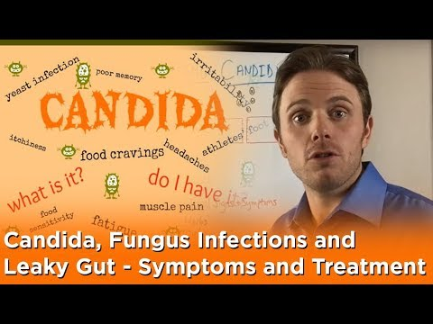 Candida, Fungus Infections and Leaky Gut - Symptoms and Treatment