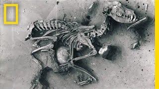 Dogs: (Prehistoric) Man