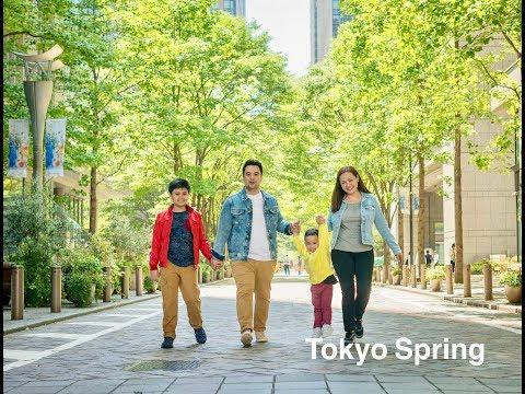 6 days of Tokyo with 2 kids = Shibazakura, Disney, Wisteria, Fuji, Tokyo City