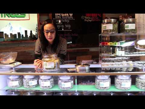 Portland Marijuana Dispensary Walkthrough Five Zero Trees