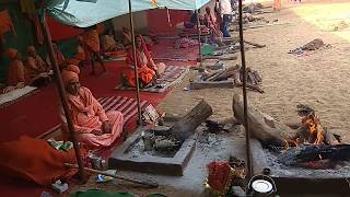 #tranding महिला नागा साधु का इंटरव्यू , mahila naga sadhu ka video