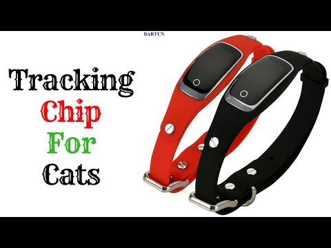 Tracking Chip For Cats