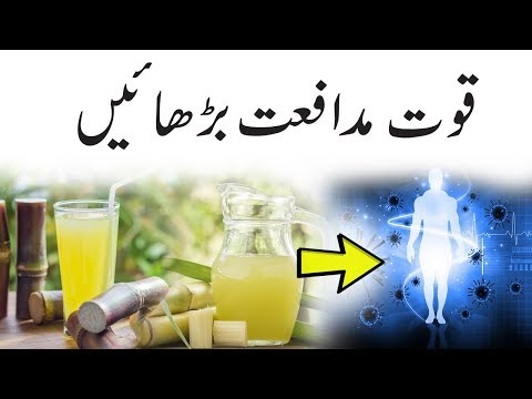 How To Boost Your Immune System Naturally - Increase Immunity