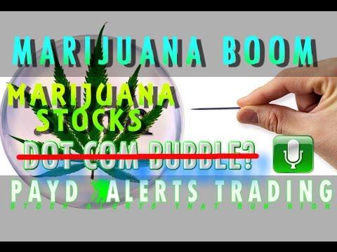 Dot Com Boom? NO! Marijuana Stocks Boom Podcast!