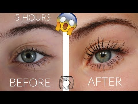 How To Grow Your Eyelashes In 5 Hours!