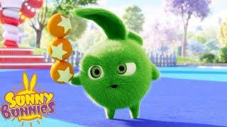 SUNNY BUNNIES - Golden Balls   Season 5   Cartoons for Children