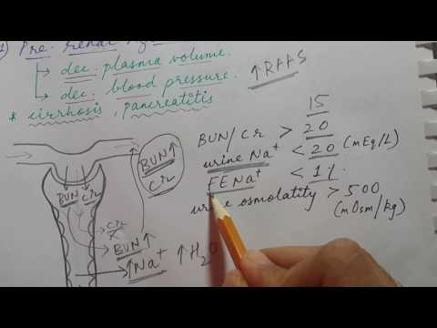 ACUTE KIDNEY INJURY | pre-renal,intrinsic renal and post-renal azotemia | USMLE STEP 1