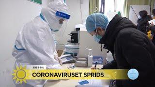 Coronaviruset: Två misstänkta fall i Finland - Nyhetsmorgon (TV4)