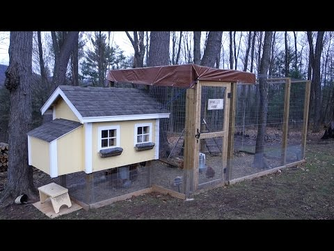 AWESOME CHICKEN COOP & RUN!