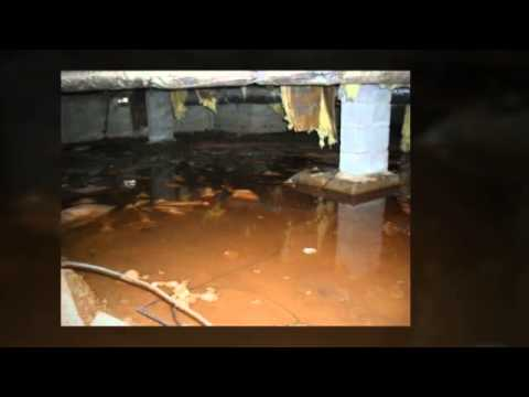Home Inspector Fayetteville NC Reveals Basement Horrors | (910) 584-7535 | Call Us!