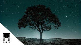 Pola & Bryson Ft. Lauren Archer - Night Dawns