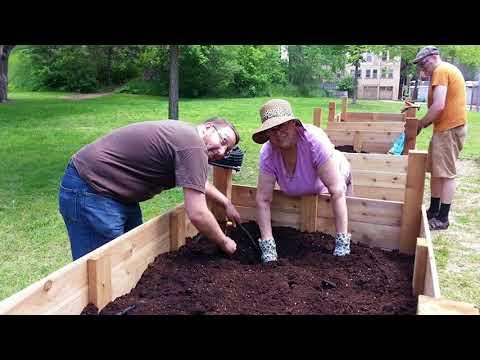 Our Future Hamilton: Community Gardens