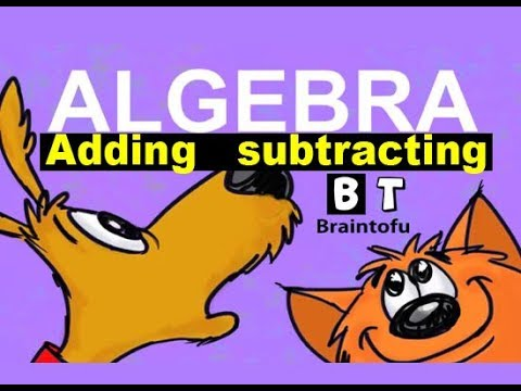 ALGEBRA BASICS - ADDING AND SUBTRACTING - algebra made simple and easy