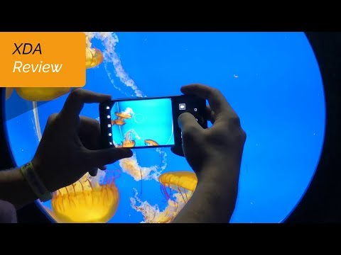 The Honor 9 Lite Camera Raises the Bar for Entry Level Smartphones