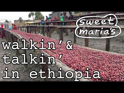 Video Travelogue -Walkin' and Talkin' in  Shakiso Ethiopia
