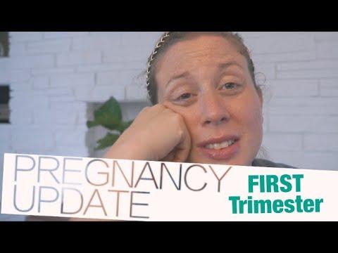 FIRST Trimester Recap | Pregnancy Update Baby #3 | steffiethischapter