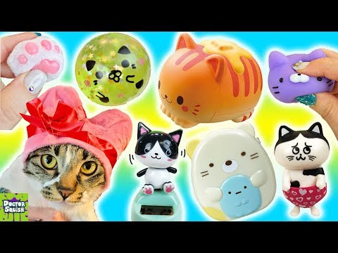 Big Cat Show! Kitty Cat Toys Squishies & Surprises With Squish Kitty! Doctor Squish