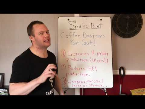 COFFEE DESTROYS YOUR GUT!