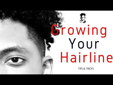 How To Grow Your Hairline Back / Barber Tips | WINSTONEE