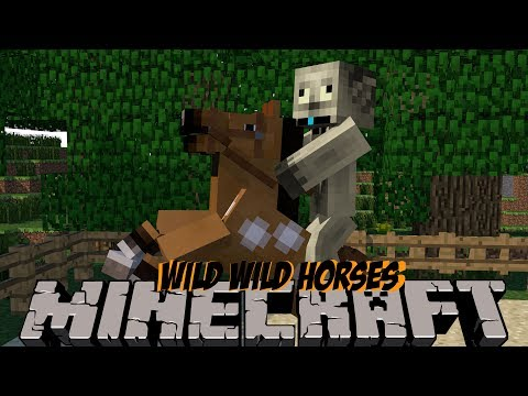Minecraft Adventure Episode 2 - WILD WILD HORSES