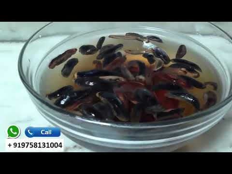 it will make you kING  || leech oil benefits