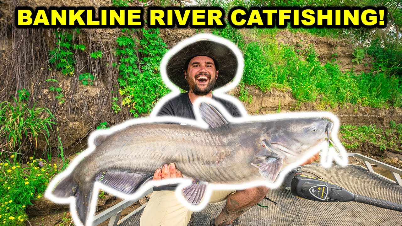 BANKLINE Fishing BIG CATFISH on the RIVER!!! (Catch Clean Cook)