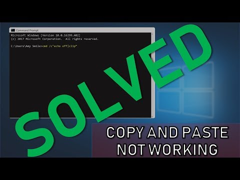 SOLVED: Copy & Paste Not Working