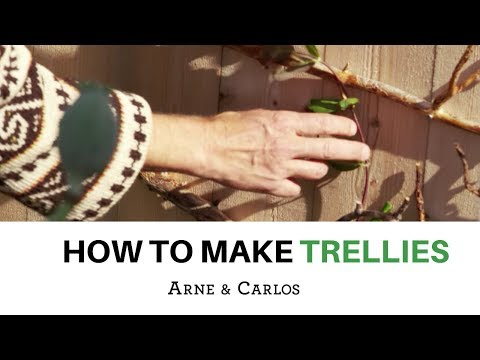 How to make a fun trellis out of recycled tree branches - by ARNE & CARLOS