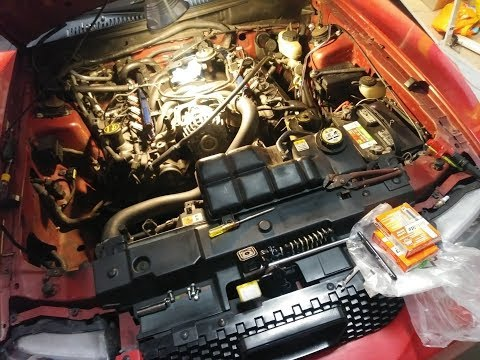 2V Mustang Spark Plugs And Intake