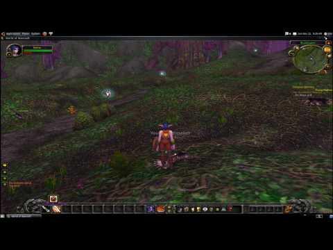 World of Warcraft running in Ubuntu 9.10 through Wine WOW