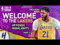 BREAKING Anthony Davis TRADED To The Lakers BEST Highlights From 2018 19 NBA Season Part 2