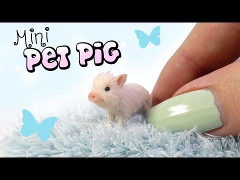 How To Mini Pet Pig Tutorial // DIY Doll Miniature Pig