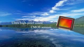 Canon Cmos Sensor Technology