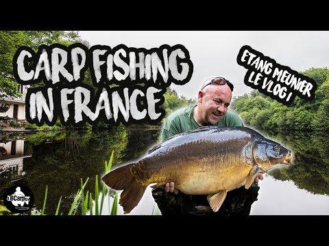 CARP FISHING ETANG MEUNIER LÉ VLOG 2018 - FULL MOVIE