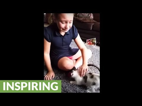 New kitten surprise sends girl into crying fit