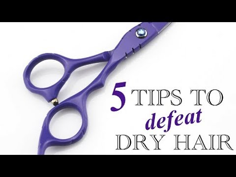5 Tips to Defeat Dry Hair