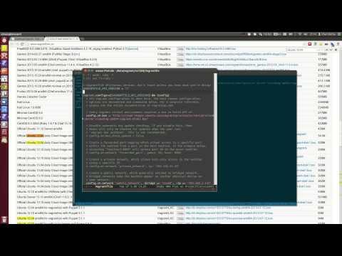 Vagrant: Ubuntu 12.04 guest with public / bridged static IP