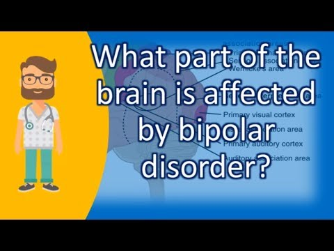 What part of the brain is affected by bipolar disorder ? |Top Answers about Health
