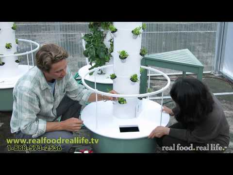 The Easiest Way to PH Balance Your Tower Garden - real food. real life.