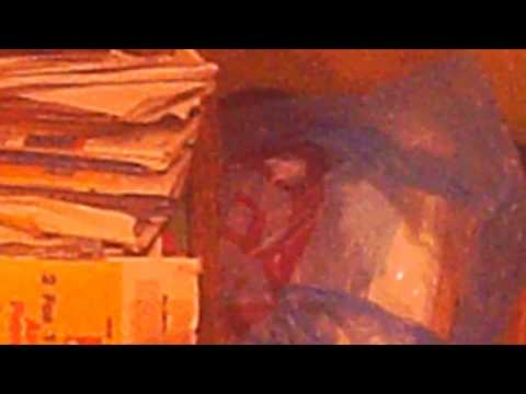REAL'' inter- dimensional entity  in my home'''